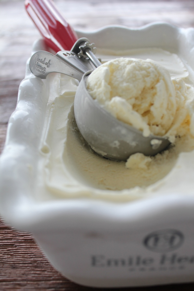 Ginger Vanilla Icecream